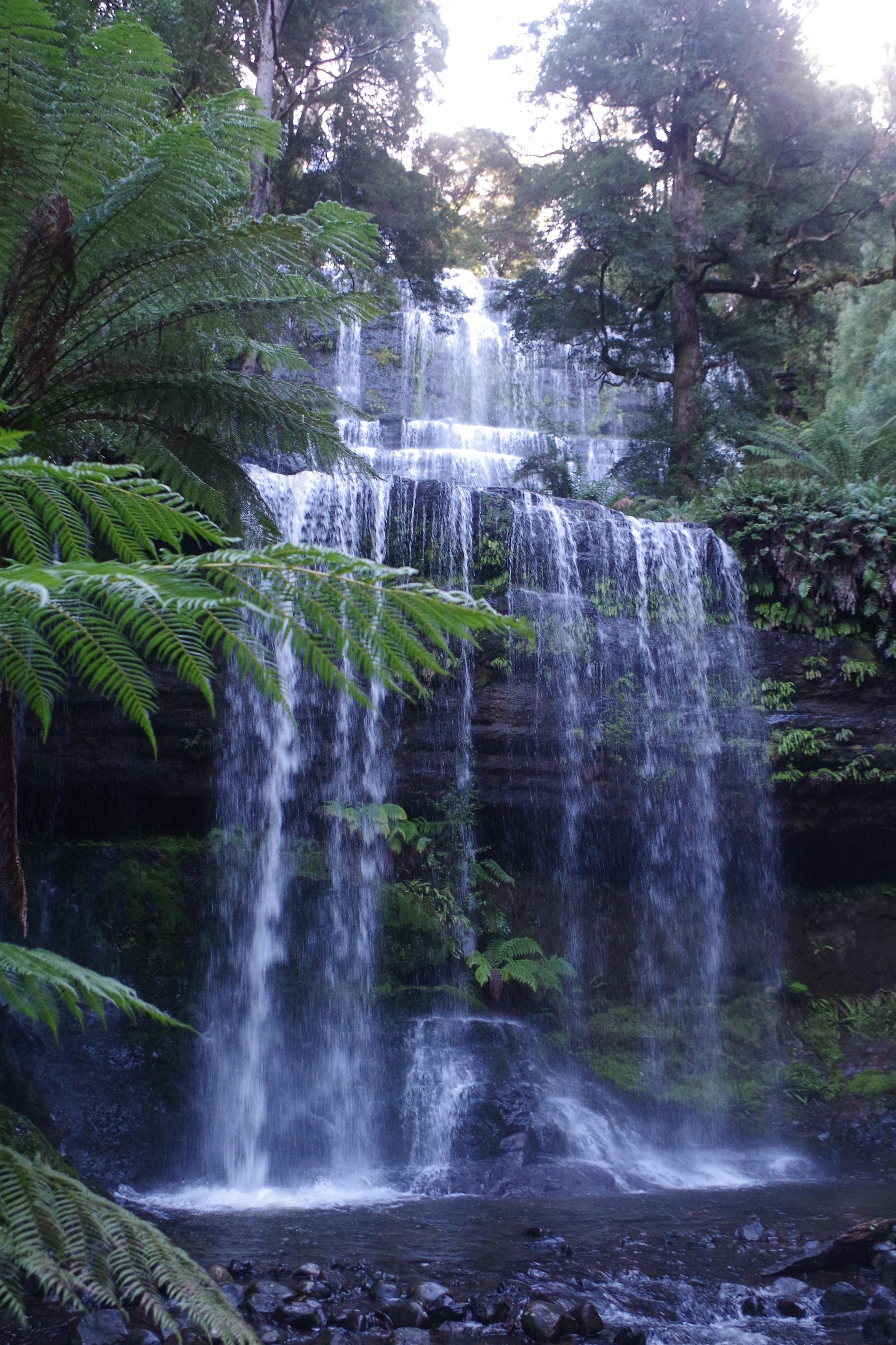 Russel Falls, Mt Field, Tasmania